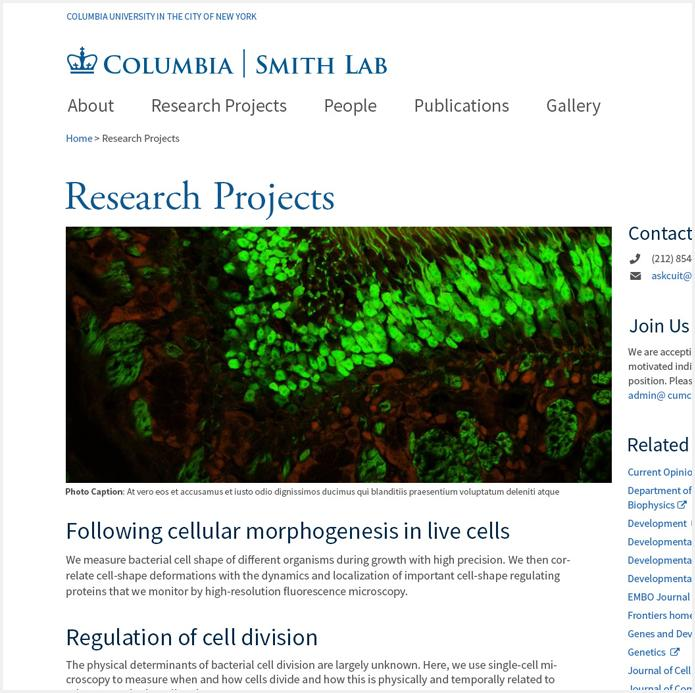 Research Projects Feature